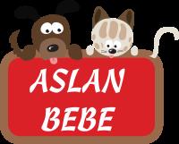 Aslan Bebe