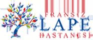 Fransiz Lape Hospital